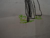 Ssc_3531